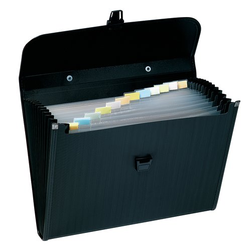 "Wilson Jones® Poly Expanding Brief, 13 Pockets, 10"" x 12"", Black"