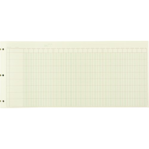 "Wilson Jones® Column Write® Pads, 24 1/4"" x 11"", 41 Lines, 25 Columns, 50 Sheets"