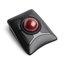 Expert Mouse® Wireless Trackball