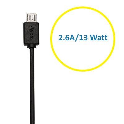 Sortie 2,6ampères/13watts