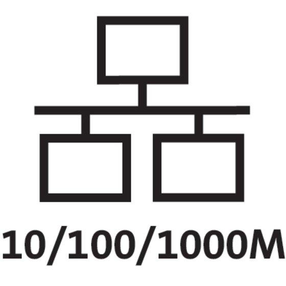 Gigabit Transfer Speeds