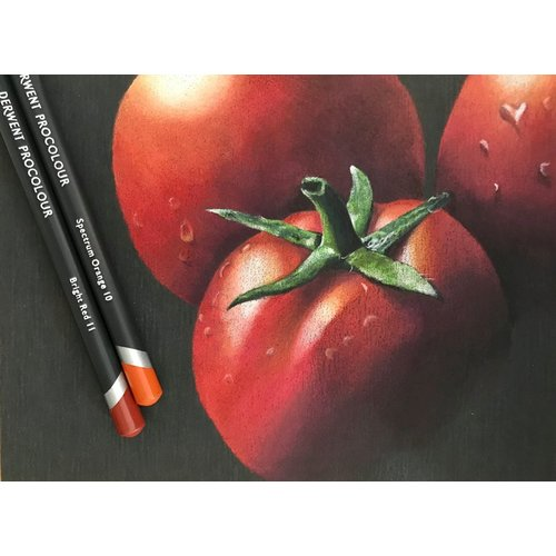 Tomatoes by Judith Selcuk