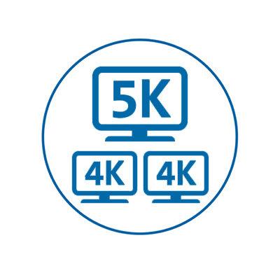 Single 5K/Dual 4K Video Support