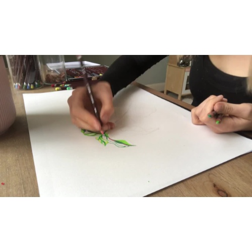 Observational Drawing with Claudine O'Sullivan